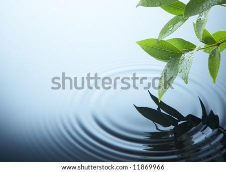 water ripple on a rainy day - stock photo