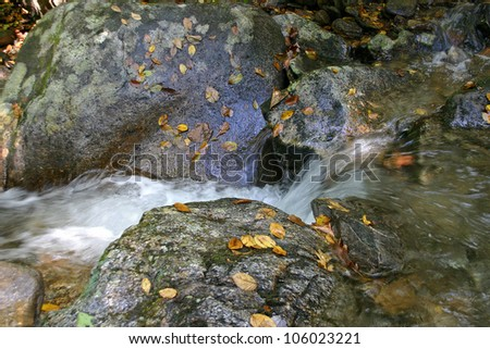 Water runoff from the mountains becoming a small stream flowing over rocks