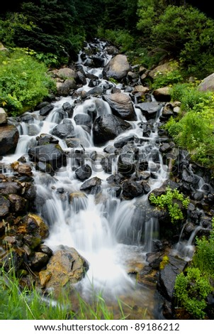Water rushing down a mountian stream with lush follage on either side