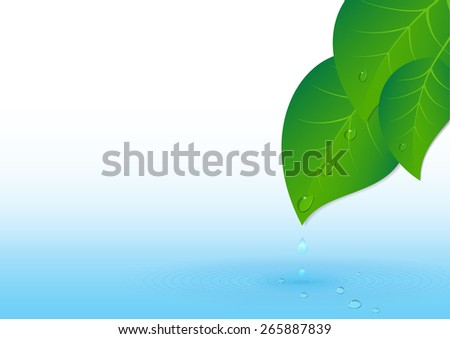 Water splash, drops and green leaves - stock photo
