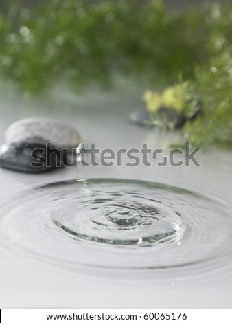 water splash  with stone and green as background - stock photo