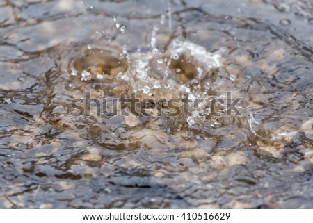Water splashes in a puddle of rain