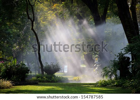 water sprau light in public park use for nature freshness in park and garden - stock photo