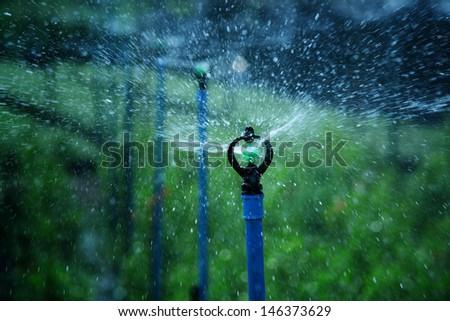 water sprinkler. - stock photo
