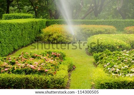 Water sprinkler in garden. - stock photo