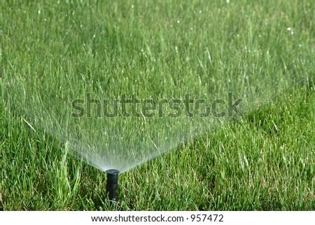 Water sprinkler showering grass - stock photo