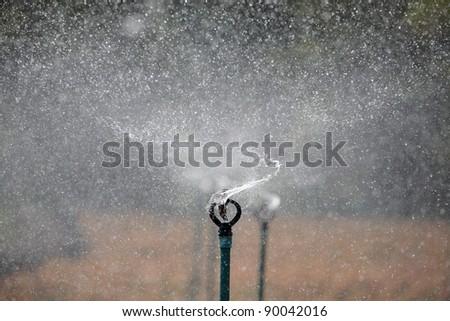 Water sprinkler system working on a nursery plantation - stock photo