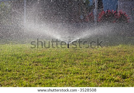 Water sprinkler wetting the front yard grass in the morning - stock photo