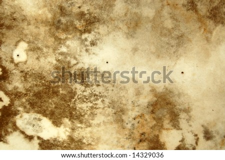Water stains and mold growth on the ceiling of an abandoned house. - stock photo
