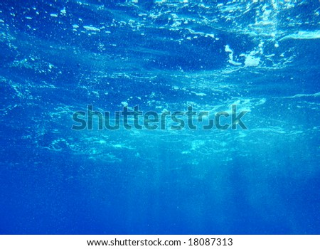 Water view from bottom of the ocean