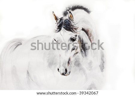 watercolor arab stallion - stock photo