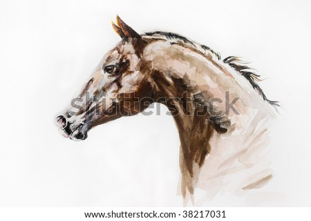 watercolor artwork of purebred stallion - stock photo