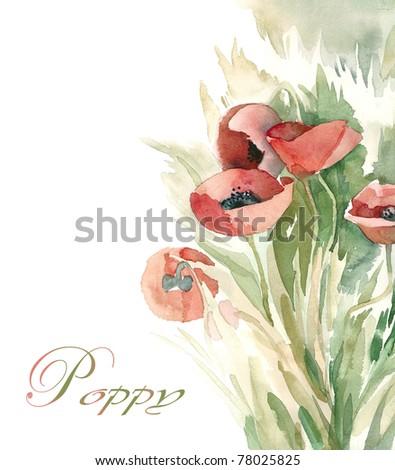 Watercolor background  -Poppy-, artist Marina Grau - stock photo