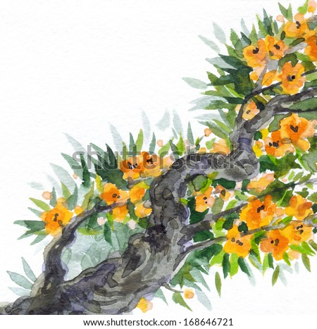 Watercolor background. The bright yellow flowers and lush green foliage in spring blooming of an old tree  - stock photo