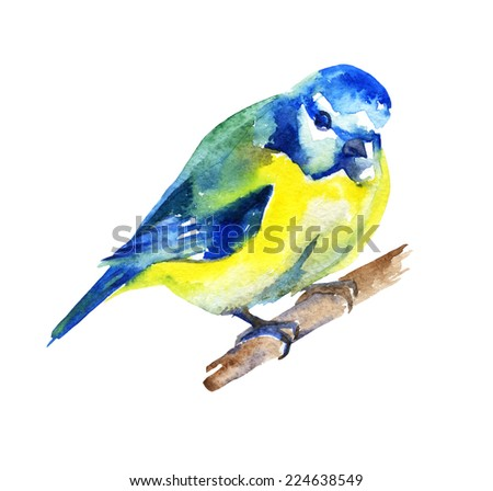 Watercolor bird for your design. raster illustration
