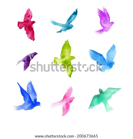 Watercolor birds. - stock photo