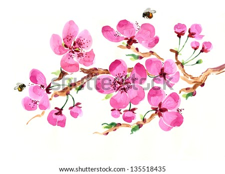 Watercolor blossoming branch - stock photo