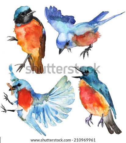 Watercolor blue birds on white background - stock photo