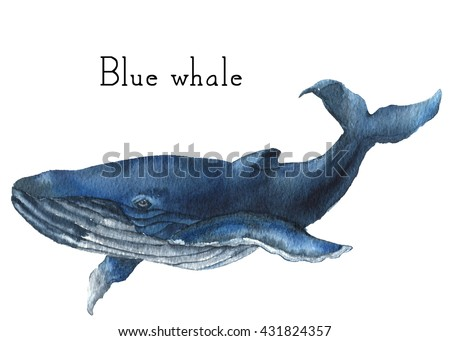 Watercolor blue whale illustration isolated on stock illustration watercolor blue whale illustration isolated on white background for design prints or background thecheapjerseys Choice Image