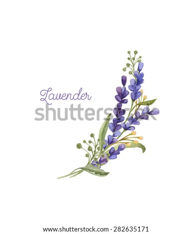 Watercolor bouquet with lavender. Hand drawn illustration for the wedding invitation or greeting card - stock photo