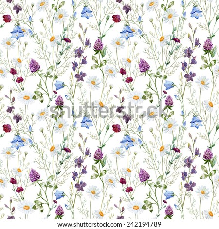 watercolor, chamomile, clover, wild flowers, flowers - stock photo