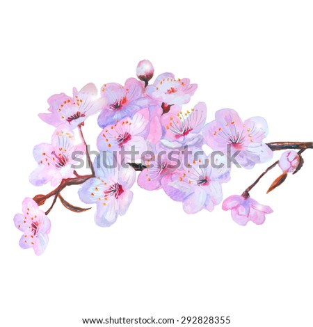 Watercolor cherry blossoming pink  - illustration. Can be used as the background for wedding invitations, greeting cards, paper for scrapbooking and prints on fabrics.