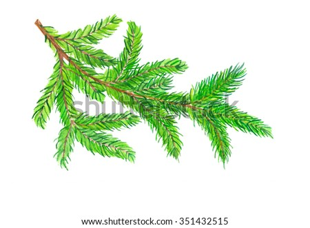 Watercolor Christmas tree branch isolated at white background - stock photo