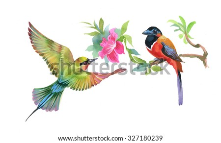 Watercolor colorful Birds and branch with leaves and flower