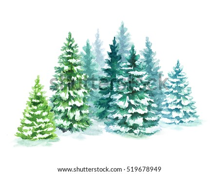 watercolor coniferous forest illustration, Christmas fir trees, winter nature, holiday background, conifer, snow, outdoor, snowy rural landscape