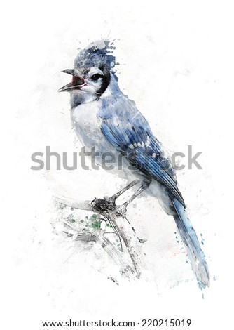 Watercolor Digital Painting Of Blue Jay Bird - stock photo