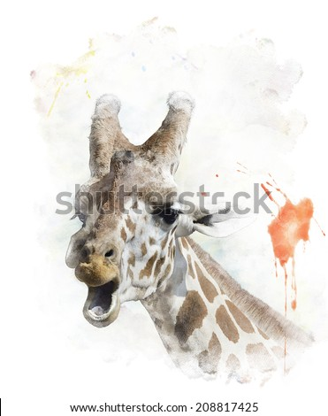 Watercolor Digital Painting Of  Giraffe Portrait - stock photo