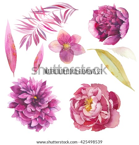Watercolor floral elements set. Vintage leaves, peony flowers, hellebore flower and palm tree branch. Isolated on white background hand drawn design illustration - stock photo