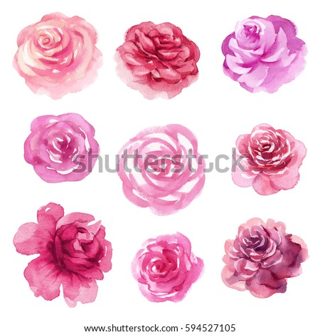 Garden floral seamless pattern on purple background watercolor vector - Purple Rose Stock Images Royalty Free Images Amp Vectors