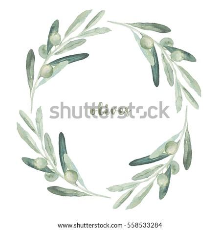 watercolor floral illustration olive branches wreath stock Olive Branch Sketch Olive Garden Clip Art