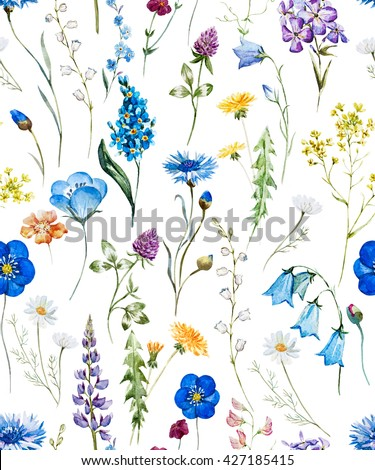 watercolor floral pattern on a white background, wild flowers, cornflower, dandelion, chamomile, clover, white background - stock photo