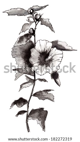 watercolor flower in black on a white background - stock photo