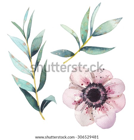 Watercolor flowers elements set. Vintage leaves, anemone flower, branches. Artistic hand drawn design illustrations - stock photo