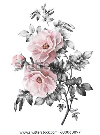Watercolor flowers floral illustration pastel colors stok watercolor flowers floral illustration in pastel colors pink rose branch of flowers isolated mightylinksfo