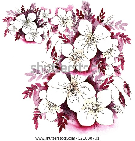 Watercolor flowers in a classical style on a white background - stock photo