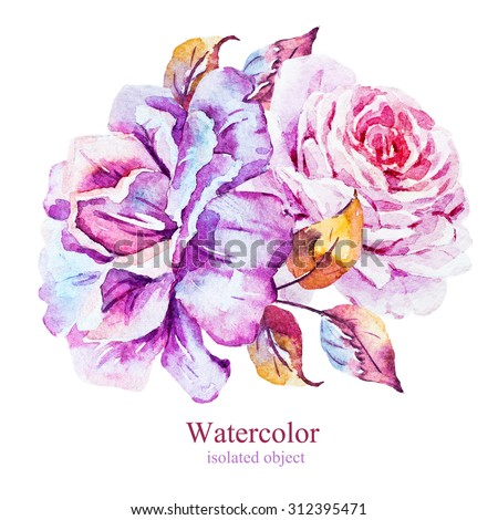 watercolor flowers rose, pink and purple rose with gold leaf, isolated object, vintage composition - stock photo