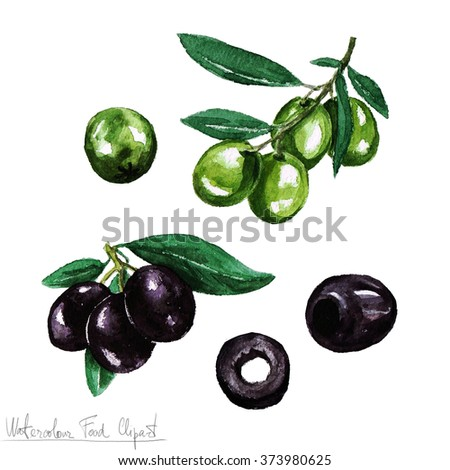Watercolor Food Clipart - Olive - stock photo
