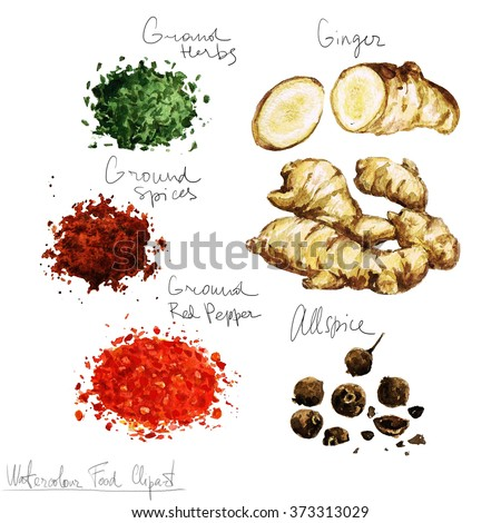 Watercolor Food Clipart - Spices - stock photo