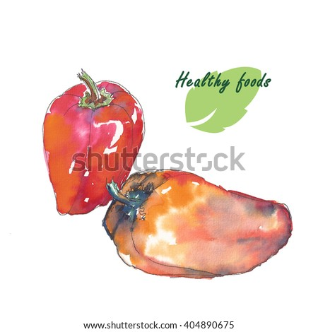 Watercolor foods. Peppers, onions and garlic with hand drawn painting. Pencil drawing handmade spices. Natural and organic. Healthy fruits.