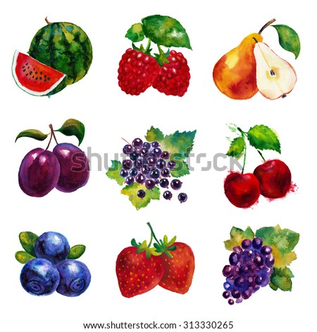 Watercolor fruits set. Hand drawn watermelon, raspberry, pear, plums, currant, cherry, blueberry, strawberry and grape. Isolated on white background. - stock photo
