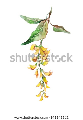 Watercolor Golden Chain - stock photo