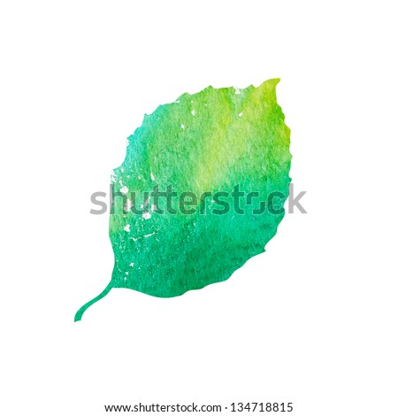 Watercolor green leaf design element - stock photo