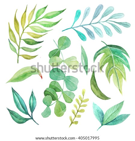 Watercolor green spring leaves set. Collection of hand painted green foliage inspired by garden greenery and plats. Isolated objects perfect for eco nature design - stock photo