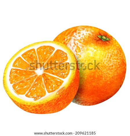 watercolor group of oranges - stock photo
