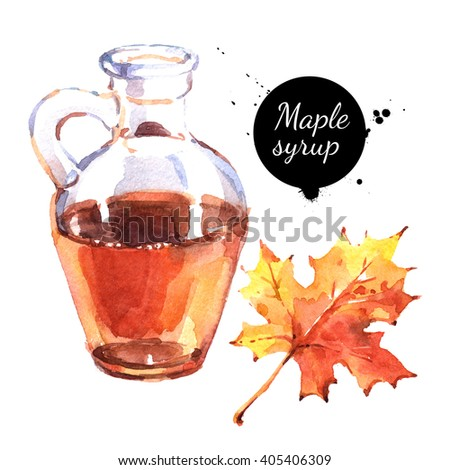 Watercolor hand drawn maple syrup in glass bottle and autumn leaf. Isolated eco natural food illustration on white background - stock photo