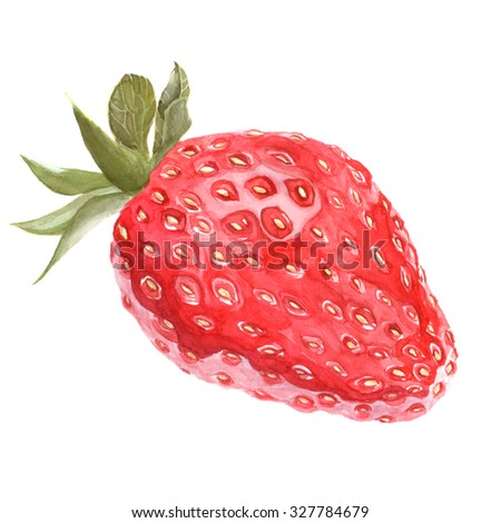 Watercolor hand drawn realistic isolated strawberry